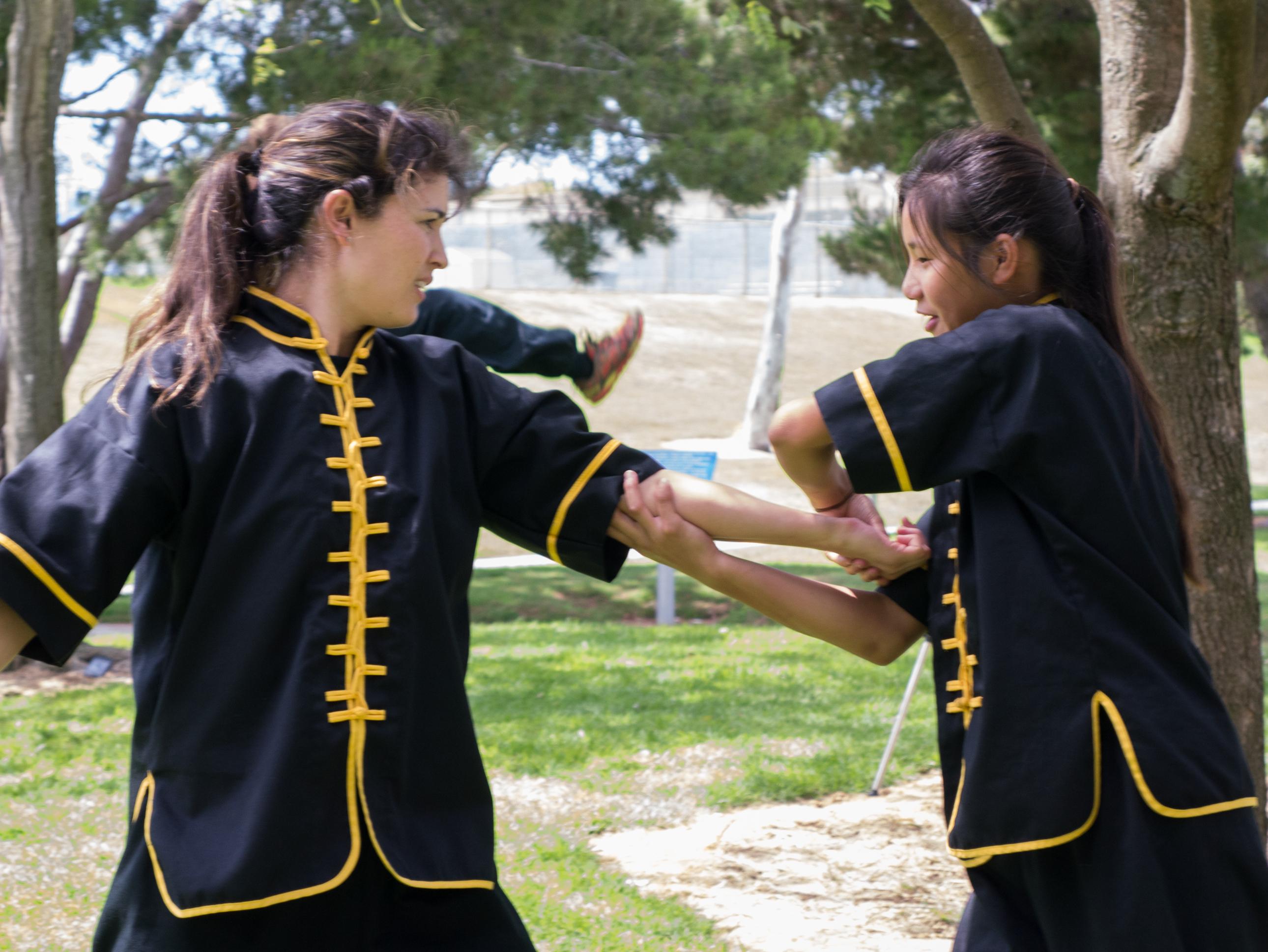 Grandmaster Lee Kam Wing Workshop 2014-64.jpg