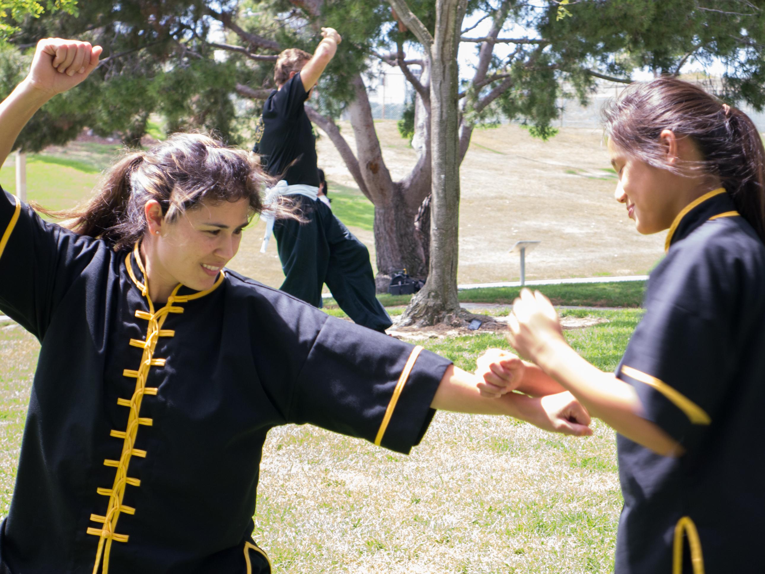 Grandmaster Lee Kam Wing Workshop 2014-57.jpg