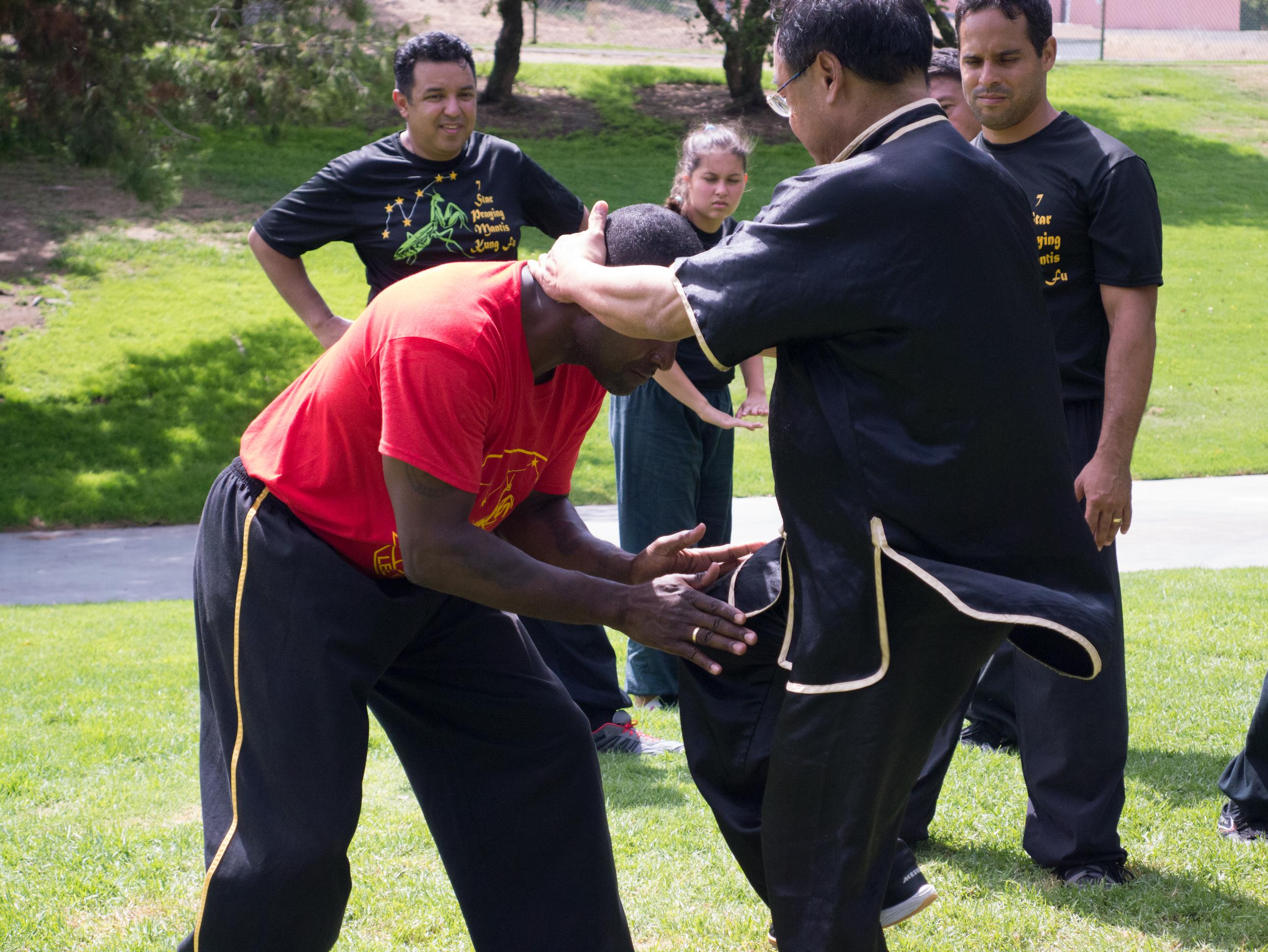Grandmaster Lee Kam Wing Workshop 2014-80.jpg