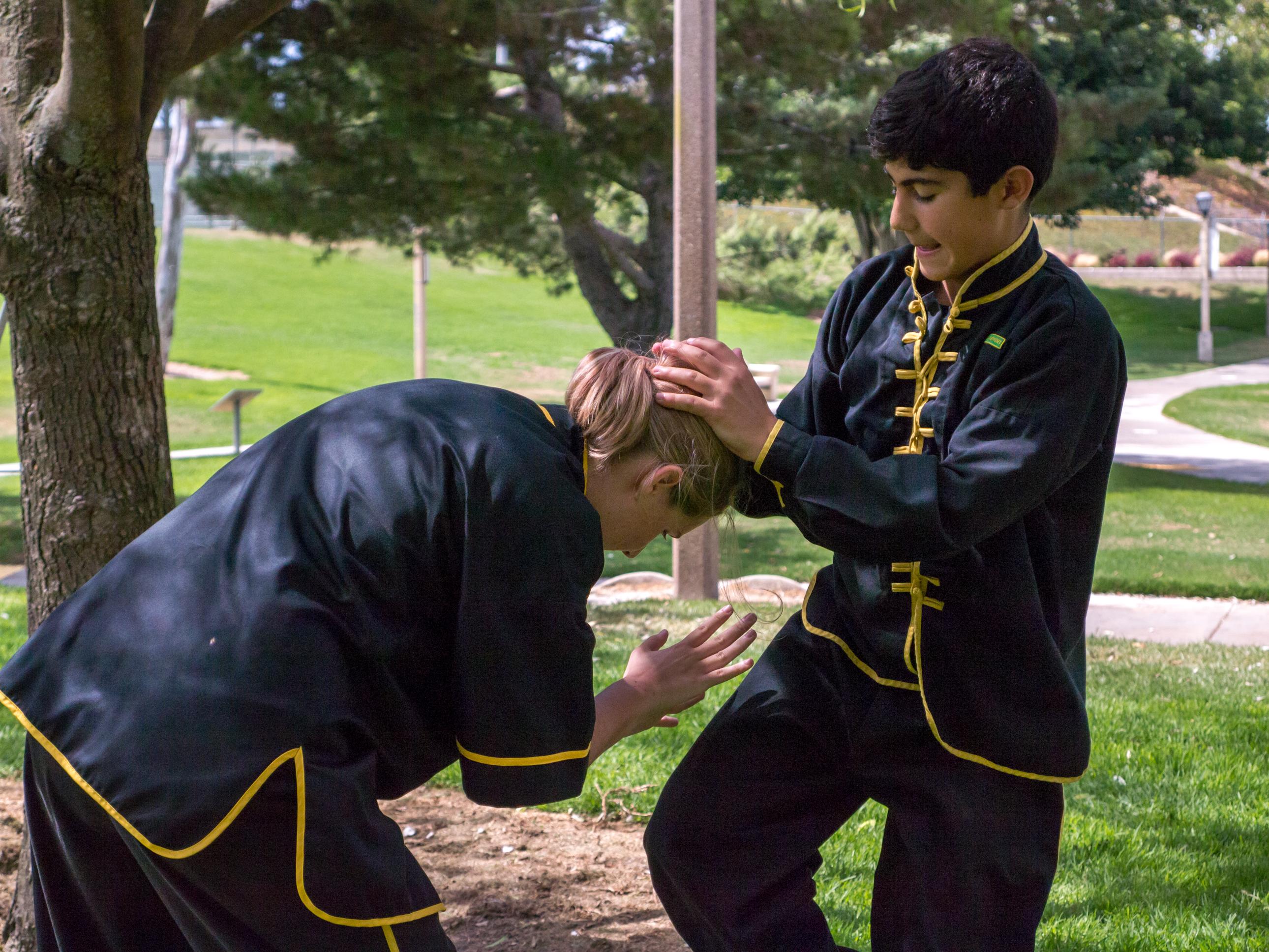 Grandmaster Lee Kam Wing Workshop 2014-54.jpg