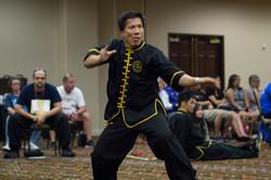 Las Vegas ICMAC-20140802-071.jpg