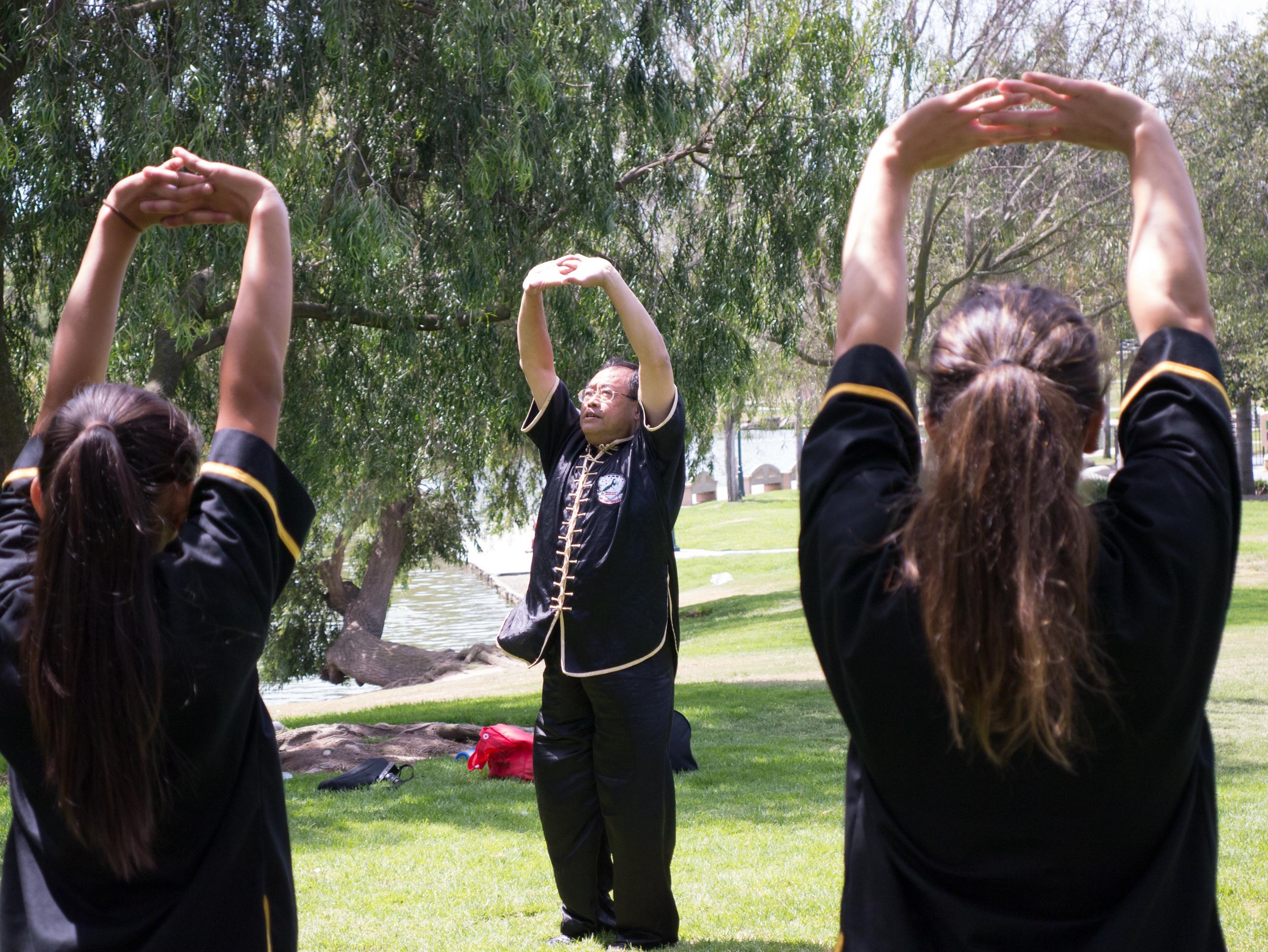 Grandmaster Lee Kam Wing Workshop 2014-15.jpg