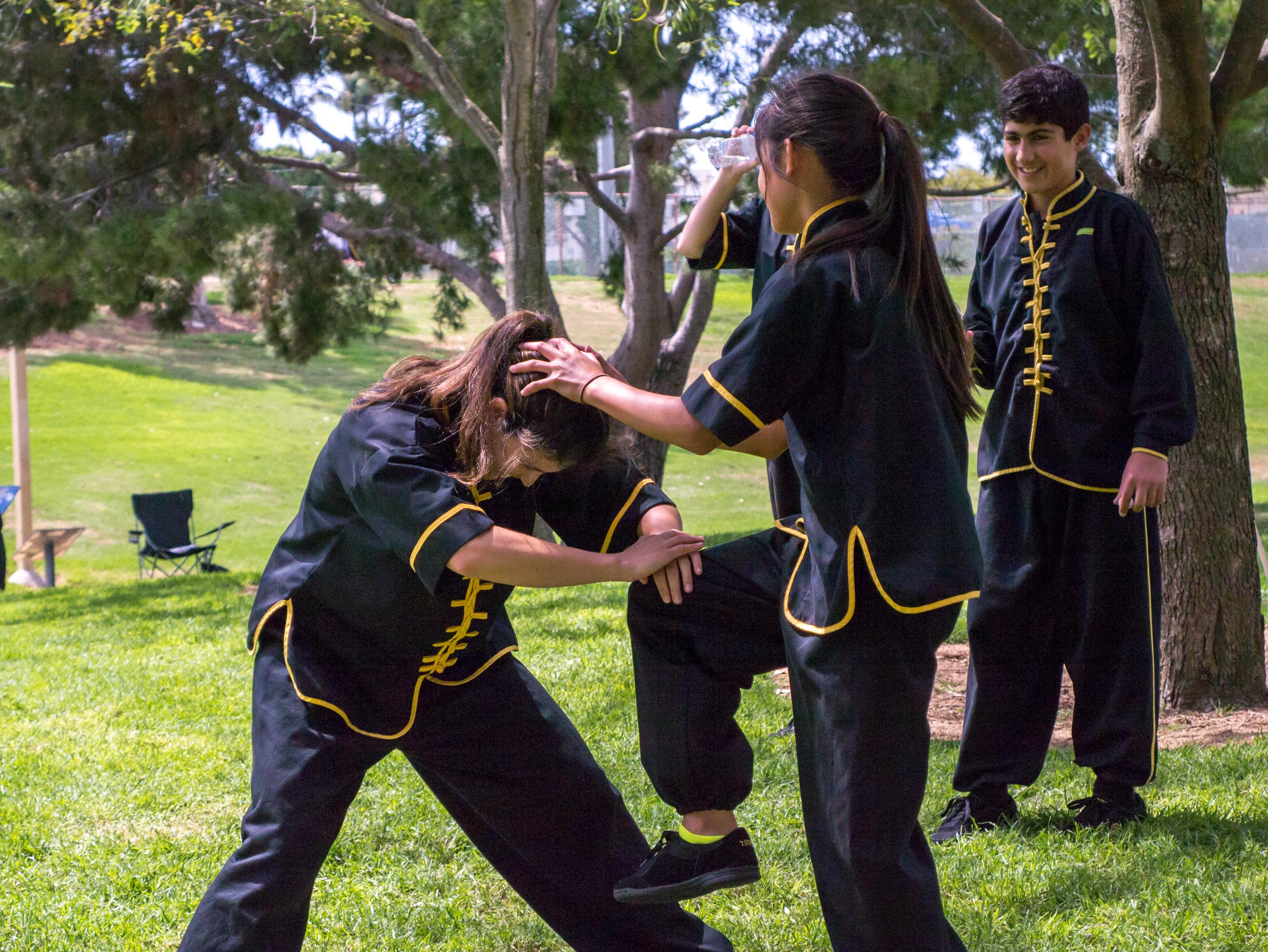 Grandmaster Lee Kam Wing Workshop 2014-41.jpg
