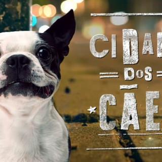 Cidade dos Cães