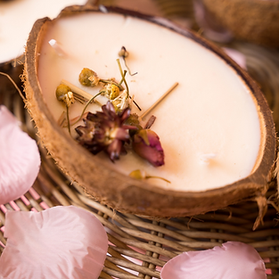 Coconut Candle Bowls