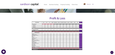 Free Profit and Loss Template Sardison Capital