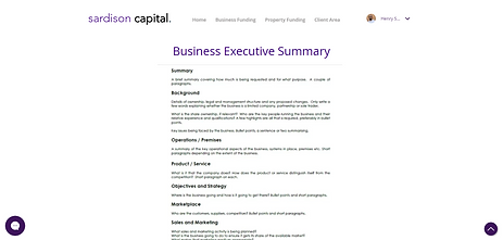 Sardison Capital Business Executive Summary