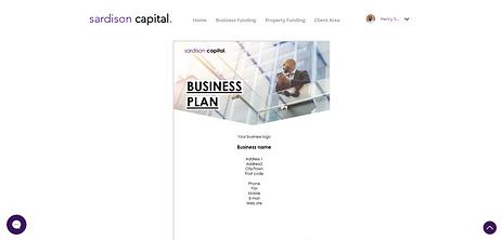 Sardison Capital Free Business Plan Template