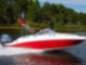 20' Stingray 201 DS 2020