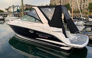 29' Monterey 295 Sport Yacht 2019