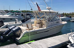 29' Grady-White Chesapeake 2009
