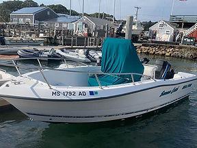 21' Sea Pro 2000