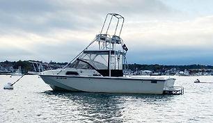 27' Boston Whaler 27 Inboard 1984