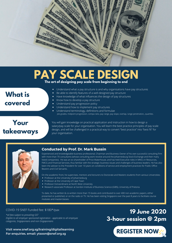 Pay Scale Design.png