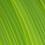 Thumbnail: Пластик Fiberlogy Pet-G