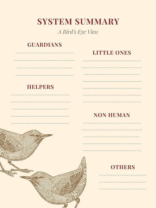 System Summary - Birds