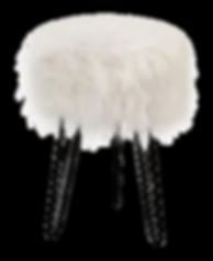 619410_Fur-(1).png
