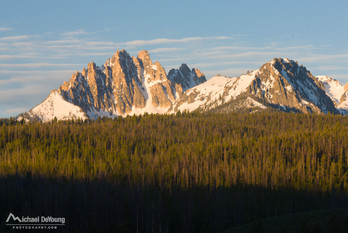 rocky mountain range, large forest, nature