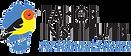 TINS-Logo-01.png