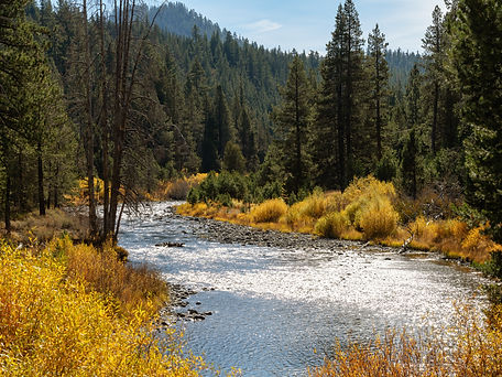 Truckee river in fall on a sunny day