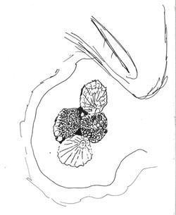 southerndown trip drawings (11)