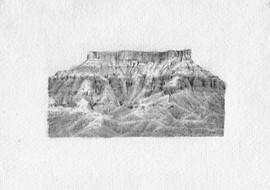Arizona drawing, Pencil on Paper, 12x8cm