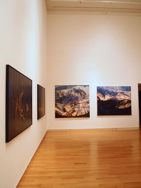 "Install of ""Wildland"", Silber Gallery, Baltimore"