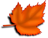Maple leave - hOIListically forward