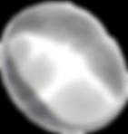 Clear Quartz - hOIListically forward
