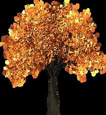 Autumn Tree - hOIListically forward