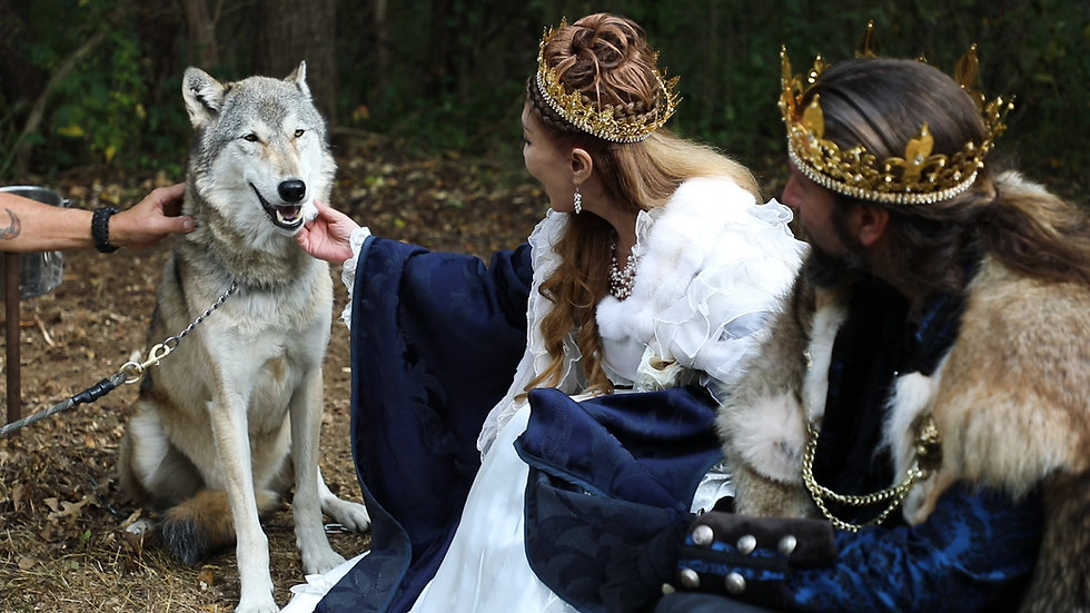 Misha and James, dressed in royal attire, kneel down to pet a grey wolf