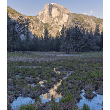 Yosemite Ntl Park, California, USA
