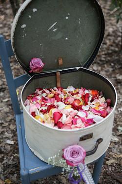 cape-town-wedding-photographers-zandri-du-preez-photography-4369.jpg