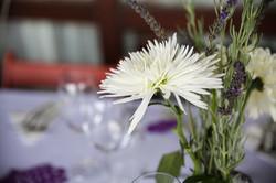 cape-town-wedding-photographers-zandri-du-preez-photography-5634.jpg