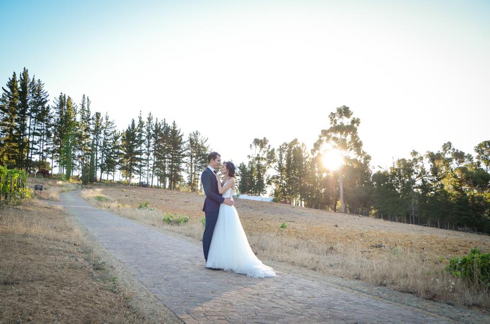 Cape Town Wedding Photographers Zandri du Preez Photography N&C (571).jpg