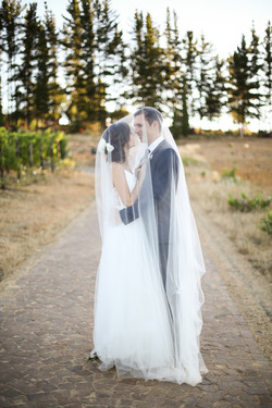 Cape Town Wedding Photographers Zandri du Preez Photography N&C (581).jpg