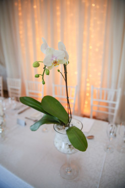 cape-town-wedding-photographers-zandri-du-preez-photography-0337.jpg