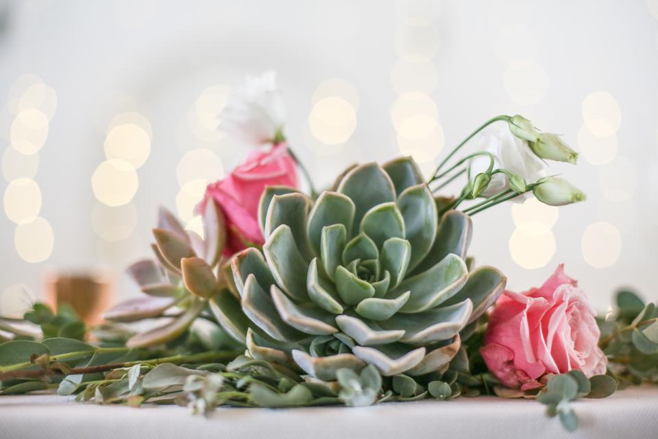 Cape-Town-Wedding-Photographers-Zandri-Du-Preez-Photography--2-2