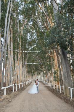 Cape-Town-Wedding-Photographers-Zandri-Du-Preez-Photography--428