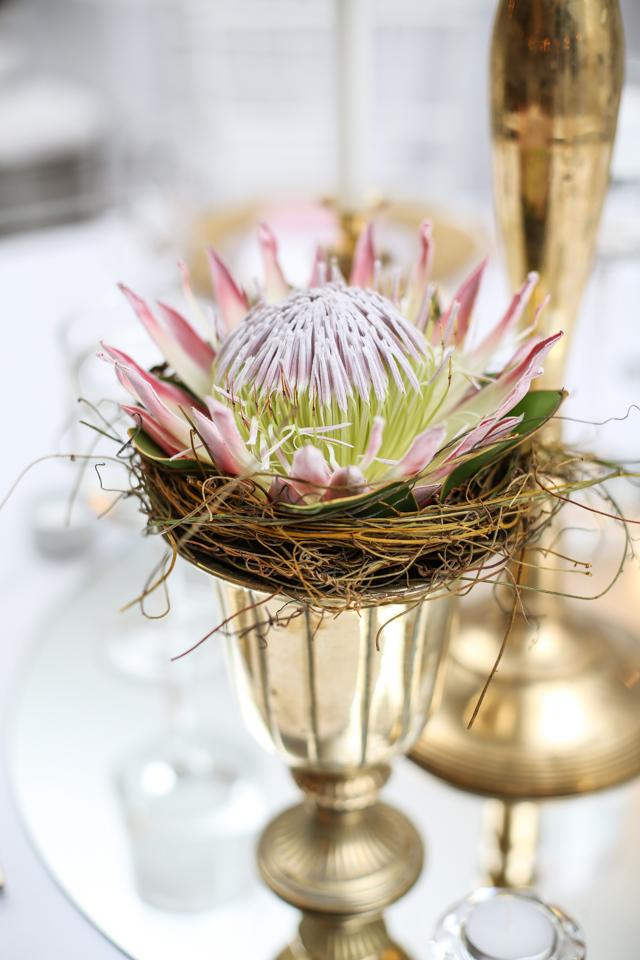 Cape-Town-Wedding-Photographers-Zandri-Du-Preez-Photography--323