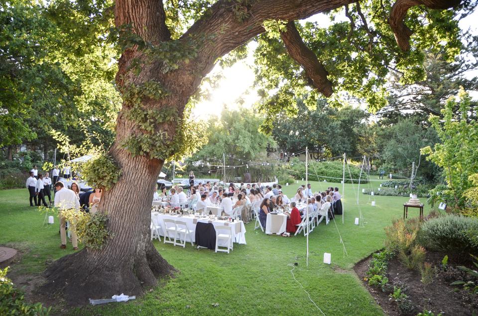 beautiful-cape-town-wedding-photographers-zandri-du-preez-photography--500.jpg