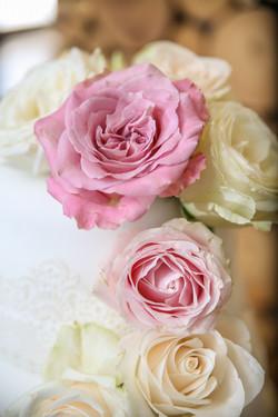 cape-town-wedding-photographers-zandri-du-preez-photography-3413.jpg
