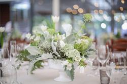 Cape Town Wedding Photographers Zandri du Preez Photography N&C (468).jpg