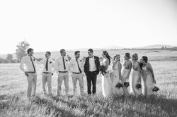 Cape-Town-Wedding-Photographers-Zandri-Du-Preez-Photography--499