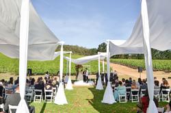 Cape-Town-Wedding-Photographers-Zandri-Du-Preez-Photography--347