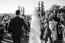 Cape-Town-Wedding-Photographers-Zandri-Du-Preez-Photography--447