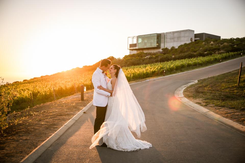 Cape-Town-Wedding-Photographers-Zandri-Du-Preez-Photography--707