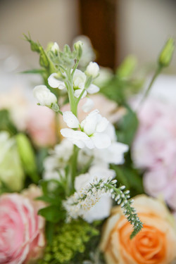 cape-town-wedding-photographers-zandri-du-preez-photography-3353.jpg