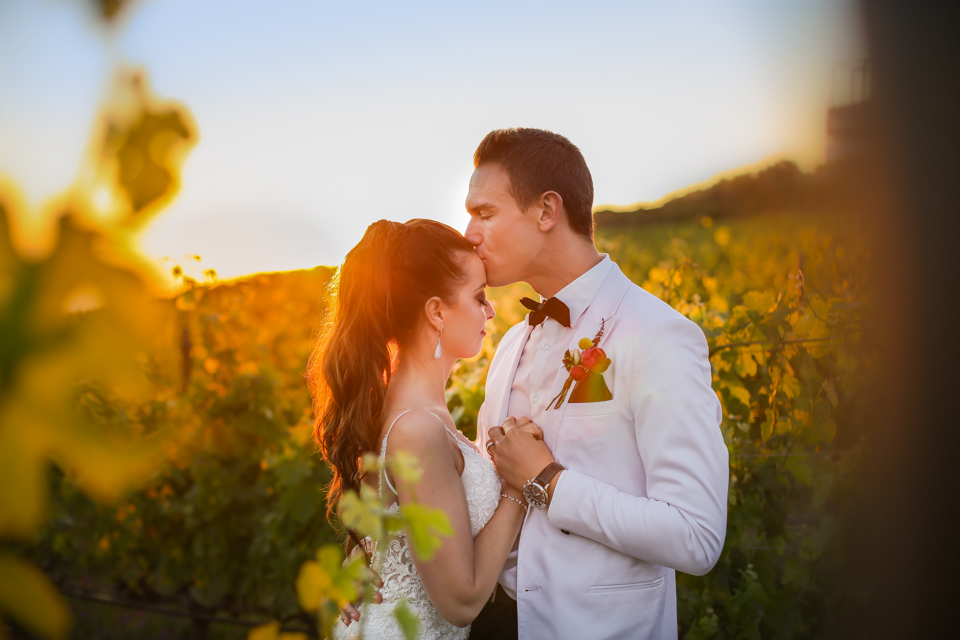 Cape-Town-Wedding-Photographers-Zandri-Du-Preez-Photography-1236-2