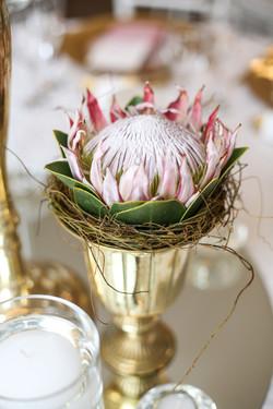Cape-Town-Wedding-Photographers-Zandri-Du-Preez-Photography--344